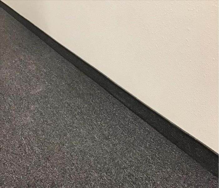 Carpet with wet drywall