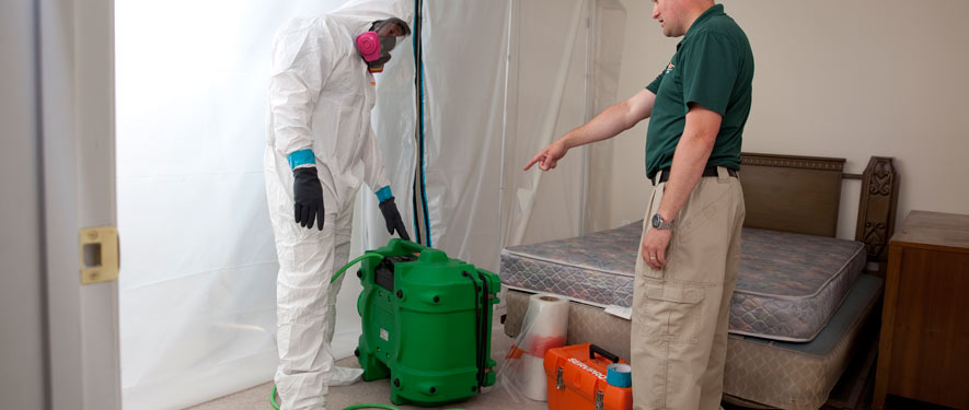 Granbury, TX mold removal process